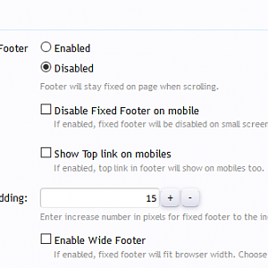 [cXF] Advanced Footer: Options